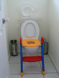 Main toilet seat with step